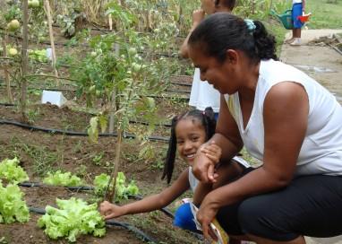Agricultores familiares recebem R$ 23,7 milhões do PAA