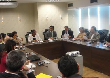 Ministra realiza audiência com Subcomitê de Prevenção da Tortura da ONU