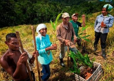 Projeto Terra Negra Brasil será lançado no RS